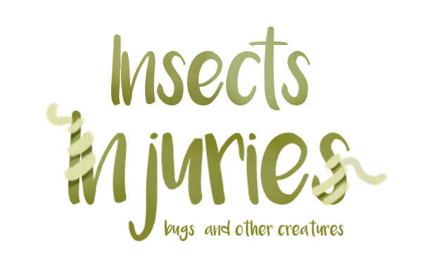 Logo insect injuries